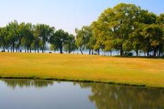 Landscape of West lake. Hangzhou. China. Stock Photos