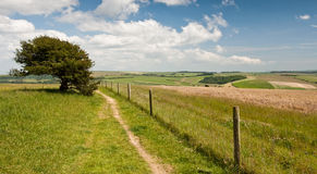 Landscape at West Sussex Stock Photography