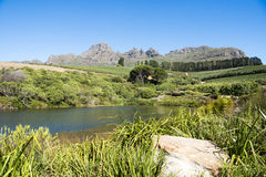 Landscape Western Cape, South Africa Stock Images
