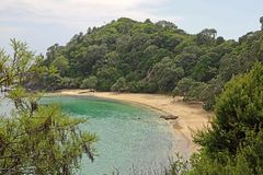 Whale Bay. Landscape on Whale Bay , New Zealand Royalty Free Stock Image