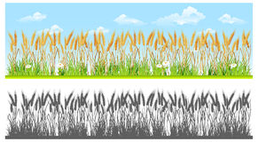 Landscape with wheat stock illustration