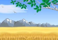 Landscape - wheat field, mountains on the horizon. Royalty Free Stock Image