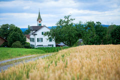 Landscape with Wheat Field Stock Photos