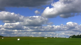 Landscape with white bales Royalty Free Stock Image