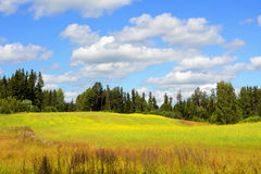 Landscape with white clouds Royalty Free Stock Photo
