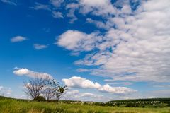 Landscape with white clouds and green grass. Sunny landscape with white clouds, green grass, small houses and forest on the horizon Stock Images