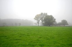 Landscape with white foggy sky Royalty Free Stock Photography