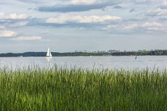 Landscape. White yacht in the bay and the city on the horizon. White yacht with white sails on a big lake and a city on the horizon Stock Photography