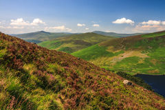 Landscape of Wicklow Mountains in summer, Ireland. Wicklow Mountains, Sally Gap, Ireland Stock Image