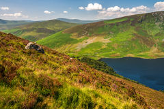 Landscape of Wicklow Mountains in summer, Ireland. Wicklow Mountains, Sally Gap, Ireland Stock Photography