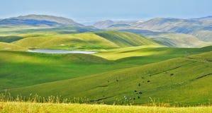 Landscape wih Horses. Ushkonyr Lake, Almaty, Kazakhstan, Alpine landscape with horses Royalty Free Stock Image