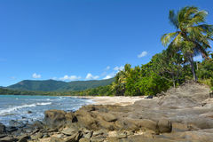 Landscape of a wild beach on the Pacific Ocean in Queensland  Au Stock Photos