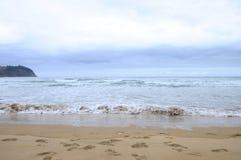 Landscape of wild coast in mutriku Royalty Free Stock Photography