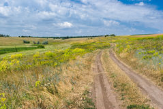 Landscape of wild Ukrainian prairie Stock Photography