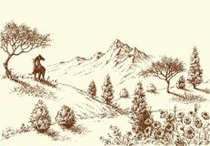 Landscape, wilderness sketch. Landscape, wilderness and horse drawing Royalty Free Stock Image