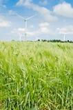 Landscape with wind generators Stock Image