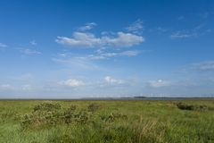 Landscape with wind turbines. Grassland with wind turbines in background in spring stock images