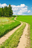 Landscape and winding road Royalty Free Stock Images