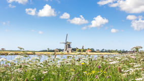 Landscape with windmill and wild flowers Stock Photography