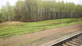 Landscape from the window of a moving train. Woodland video from the window of a moving train. Travel concept stock footage