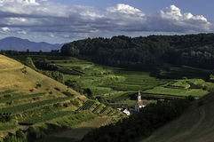 Landscape of the wineries. Panorama of vineyards in the Kaiserstuhl in Germany Stock Photos
