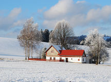 Landscape in winter Royalty Free Stock Photos