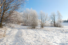 Landscape in winter Stock Image