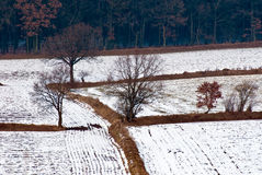 Landscape at winter Stock Photography