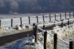 Landscape in winter. An agricultural landscape on a winter morning, everything is frozen and the barbed wire becomes a friendly white line royalty free stock photography