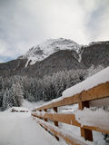 landscape winter Fotografering för Bildbyråer
