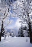 Landscape winter Stock Image