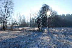 Landscape in winter Royalty Free Stock Photography