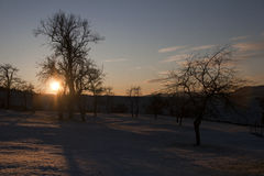Landscape in winter against the light Royalty Free Stock Images