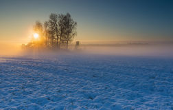 Landscape with winter field under snow at sunrise Stock Images