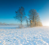 Landscape with winter field under snow at sunrise Stock Photo