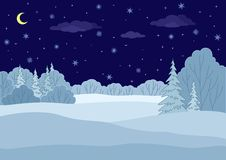 Landscape, winter forest night. Landscape: winter forest night, coniferous and deciduous trees under stars Stock Image