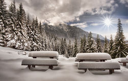 Landscape in winter mountain Stock Photography