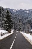 Winter mountain road. Landscape with winter mountain road Royalty Free Stock Image