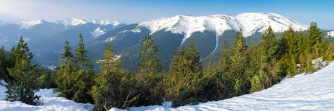 Bright winter day in the mountains royalty free stock photography