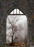Landscape in winter through old window Royalty Free Stock Photo