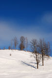 Landscape with winter season Royalty Free Stock Photos