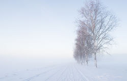 Landscape in winter Stock Images