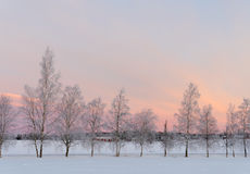 Landscape in winter Royalty Free Stock Photo