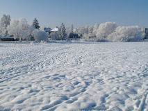Landscape in winterwith  Trees covered with snow Royalty Free Stock Photography