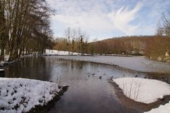 Landscape wintry - Ducks and birds in an icy water. Ducks and birds which swim in a lake frozen with an icy frosty water. It is in the day and in winter season Royalty Free Stock Image