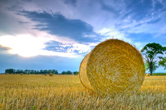 Landscape With Hay Roll Stock Photos