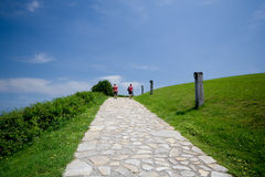 Free Landscape With Walkaway Royalty Free Stock Image - 9400686