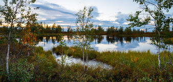Landscape on wood lake after sunset panorama Royalty Free Stock Photography