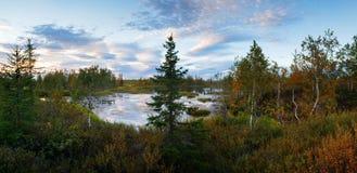 Landscape on wood lake after sunset panorama Stock Photos