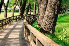 Free Landscape Wooden Bridge Royalty Free Stock Photo - 48558225